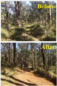 track clearing yarra valley